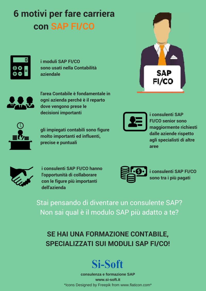 6-motivi-per-sceglere-di-far-carriera-con-SAP-FI2FCO-e1507804906259 6 motivi per diventare Analista Funzionale SAP FI / CO